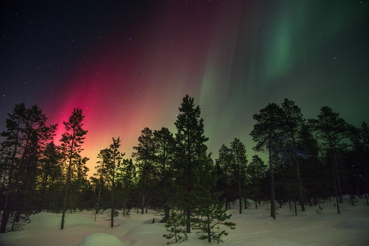 Nordlicht, Aurora borealis, Skandinavien